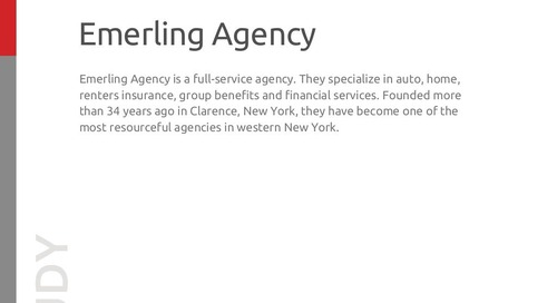 Emerling Agency Case Study