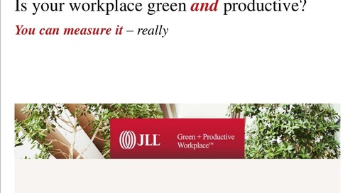 How to create a green and productive workplace