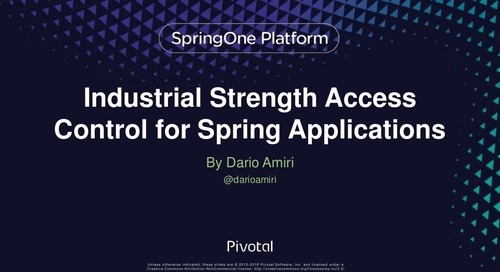 Industrial Strength Access Control for Spring Applications