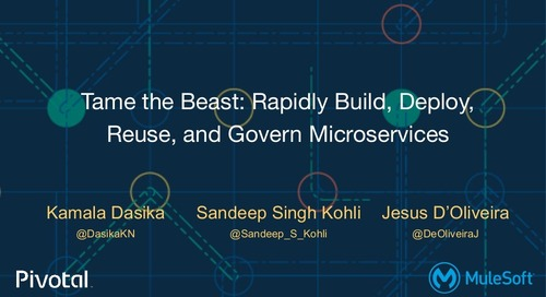 Tame the Beast: Rapidly Build, Deploy, Reuse, and Govern Microservices