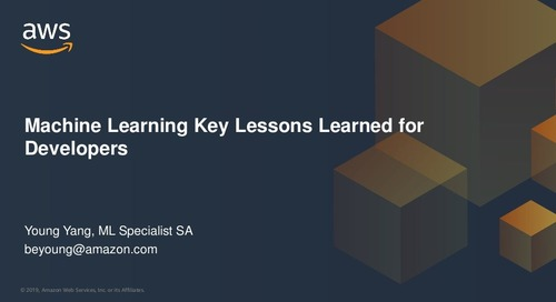 Machine Learning Key Lessons Learned for Developers