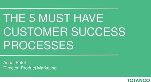 The 5 Must Have Customer Success Processes