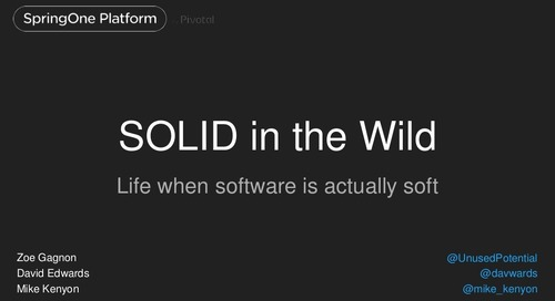 SOLID in the Wild: Life when your software is actually soft