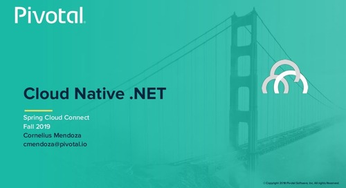 Cloud-Native .NET