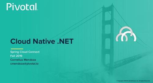 Cloud-Native .NET