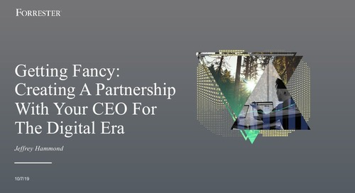 Getting Fancy: Creating a Partnership with Your CEO for the Digital Era