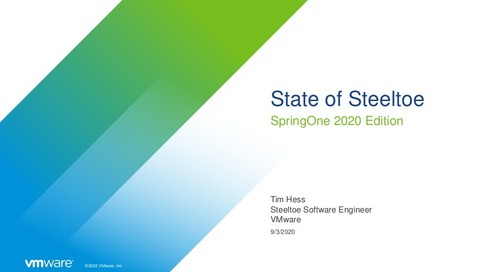 State of Steeltoe 2020