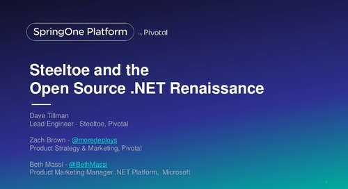 Steeltoe and the Open Source .NET Renaissance
