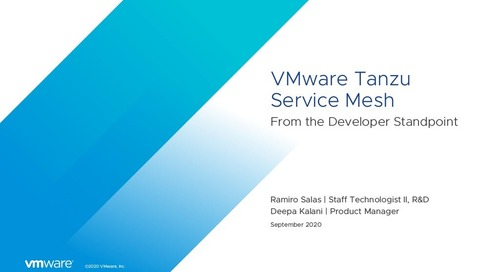 VMware Tanzu Service Mesh from the Developer's Perspective