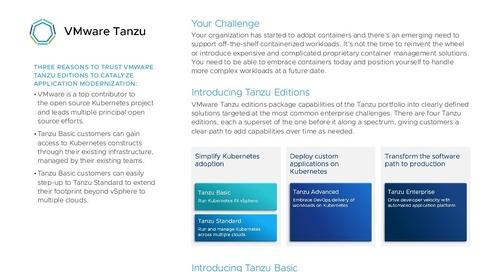 Tanzu Basic