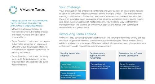 Tanzu Standard