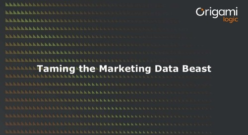 Taming the Marketing Data Beast Wth Marketing Graph™