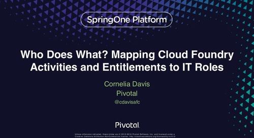 Who Does What? Mapping Cloud Foundry Activities and Entitlements to IT Roles