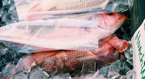 Why Farmers Markets Are the Heartbeat of a Community (And the Best Fish You've Never Had)