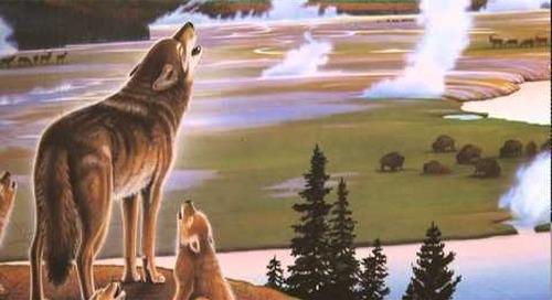 Montana's Magic Realist: Monte Dolack