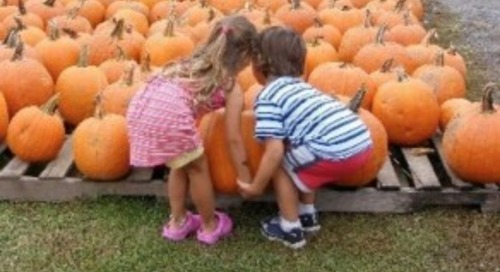 Best 7 Things to Do with Families Near Jersey City  in this Fall