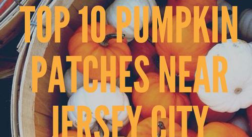 Top 10 Pumpkin Patches Near Jersey City