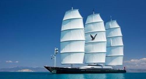 Captain's Q&A: Louis Smith of Maltese Falcon