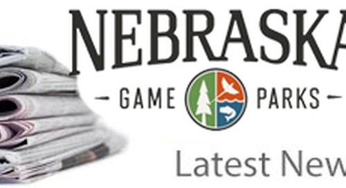 Trumpeter swans, Pine Ridge forestry highlighted in June Nebraskaland