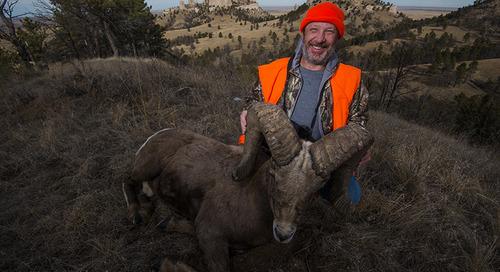 Bighorn Ram's Record Score Confirmed