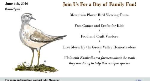 Kimball Mountain Plover Festival