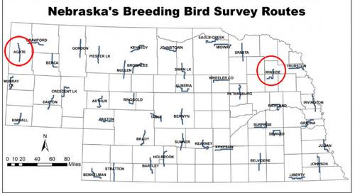 Breeding Bird Survey routes available for 2017