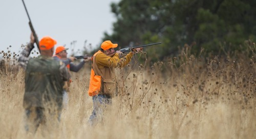 Time Change for Landowner Meeting about Pheasants