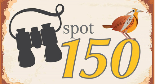 Go birding – tally 150 during Nebraska 150