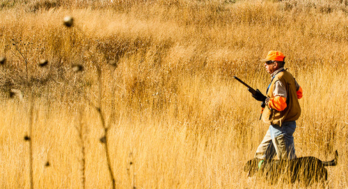Protected: Hunting Big Grass