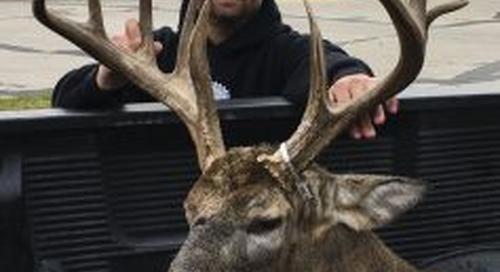 Opening weekend of firearm deer season a success