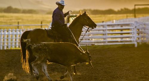 Fort Robinson all saddled up for summer
