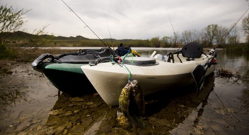 Plastic prevalence: Kayaks continue to gain popularity