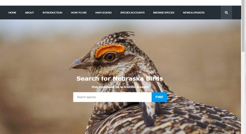 Introducing the Birds of Nebraska – Online