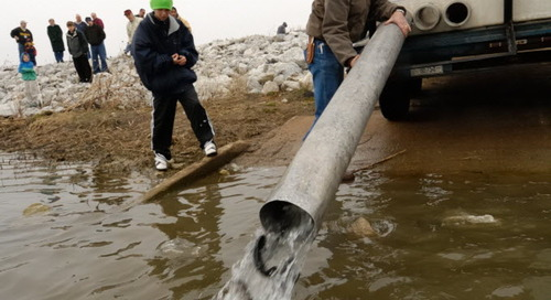 Fall Trout Stocking Update