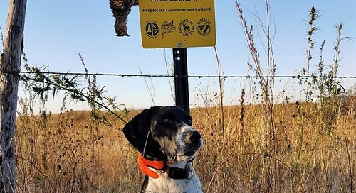 How to Hunt Nebraska's Public Lands