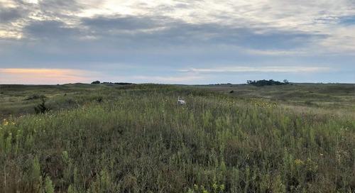 Bucket List Hunts In Nebraska