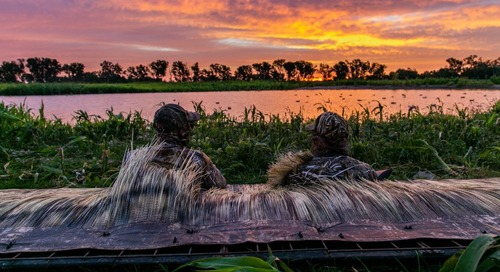 Duck hunters will choose from two bag limits this year