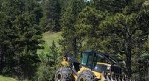 Forest thinning ramping up on Game and Parks properties