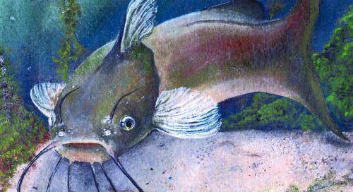 Winners announced in Nebraska Fish Art Contest