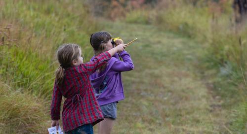 Nebraskans respond with enthusiasm to Nebraska Bird Month Challenge