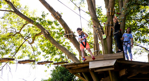 Go Ape Treetop Journey Course and Monkey Drop open at Mahoney State Park