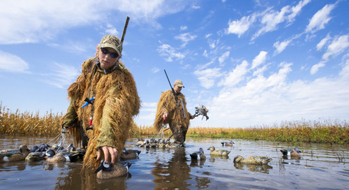 Teal hunting featured in Nebraskaland