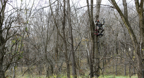 Make Safety a Priority Every Deer Season
