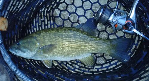 Late Summer but Still Fishing!