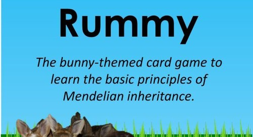 We Are Finally Ready (Almost) – Gene Rummy