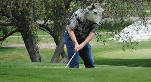 Teeing Off for Hunting Dog Rescue