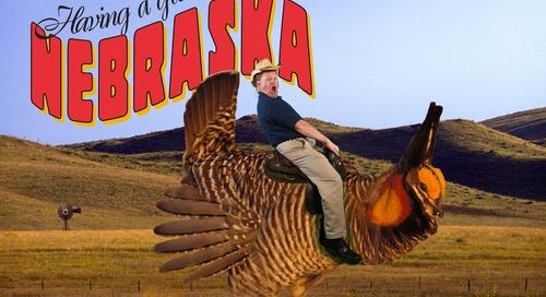 Throwback Thursday: Exaggeration Postcards