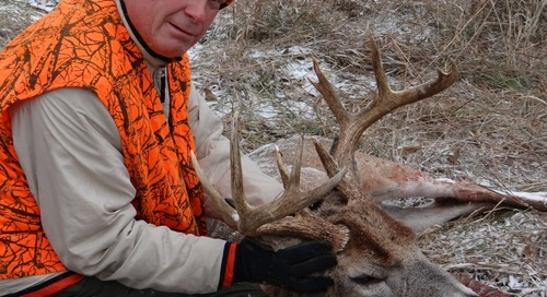 Respect, Admire and Value Harvested Deer
