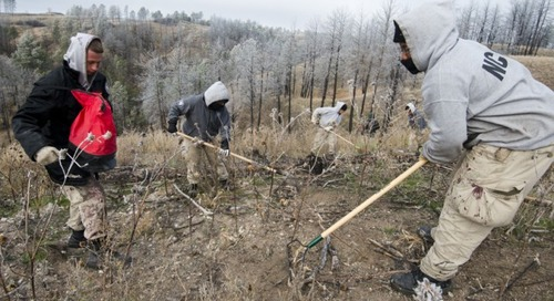 Game and Parks Projects Get Boost by AmeriCorps