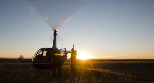 More Elk Collared in North-central Nebraska